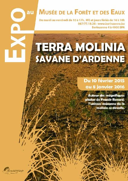 Exposition terra molinia savane d 39 ardenne spa for Exposition spa